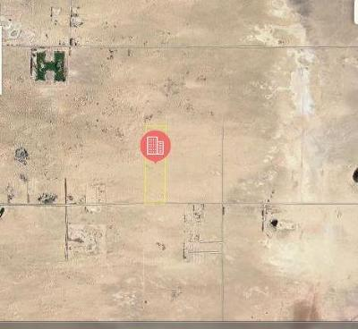 Newberry Springs Residential Lots & Land For Sale: Silver Valley Road