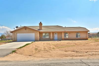 Hesperia Single Family Home For Sale: 16663 Elm Street