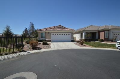 Apple Valley Single Family Home For Sale: 11002 Waterwood Street