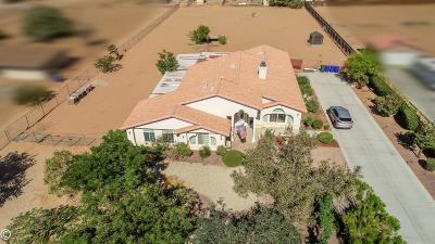 Apple Valley Single Family Home For Sale: 16864 Walpi Road