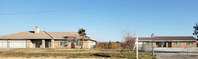 Hesperia Single Family Home For Sale: 17859 Mesa Street