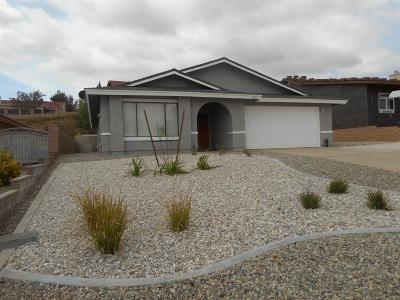 Victorville Single Family Home For Sale: 18161 Country Glen Lane