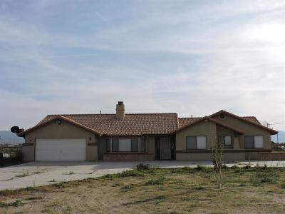 Phelan Single Family Home For Sale: 13684 Centola Road