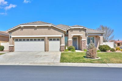 Apple Valley Single Family Home For Sale: 10317 Wilmington Lane