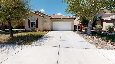 Victorville Single Family Home For Sale: 15002 Salamander Lane