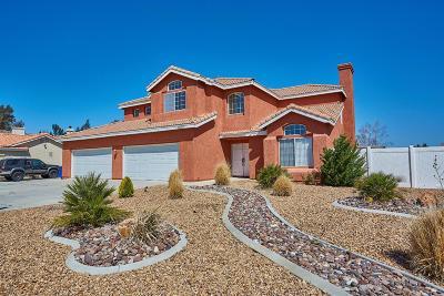 Apple Valley Single Family Home For Sale: 19250 San Jacinto Way