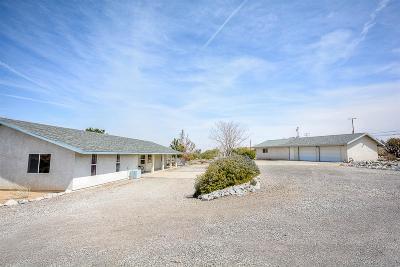Pinon Hills Single Family Home For Sale: 778 Juniper Road