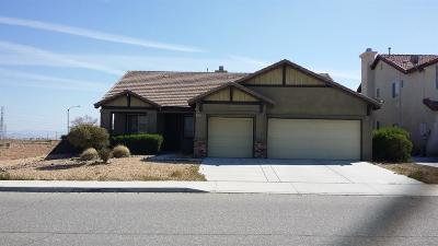 Victorville Single Family Home For Sale: 13389 Vaccaro Street