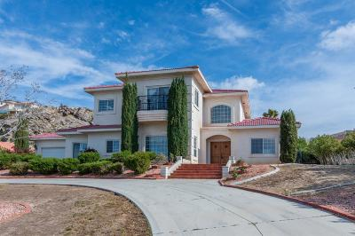 Apple Valley Single Family Home For Sale: 18960 Kaibab Road