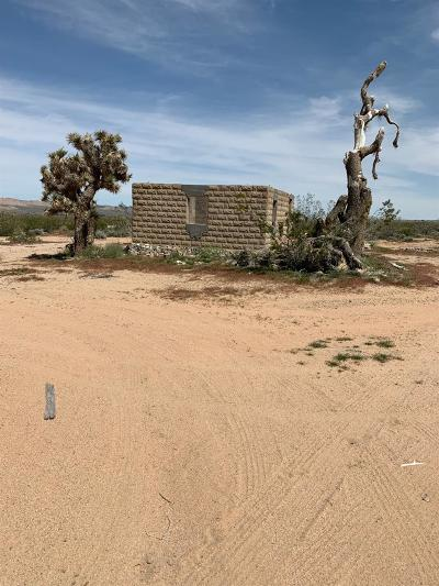 Lucerne Valley Single Family Home For Sale: 1 Camp Rock Road