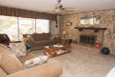 Victorville Single Family Home For Sale: 13913 Burning Tree Drive