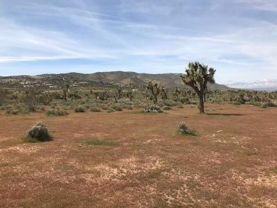 Apple Valley CA Residential Lots & Land For Sale: $43,900