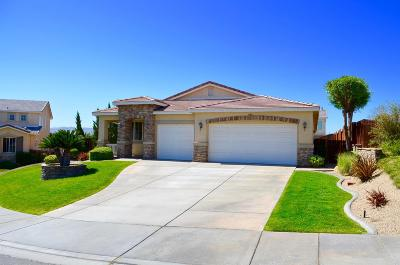 Victorville Single Family Home For Sale: 17665 View Crest Court