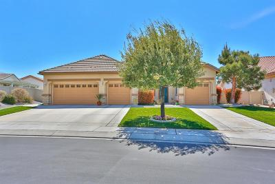Apple Valley Single Family Home For Sale: 10863 Aster Lane