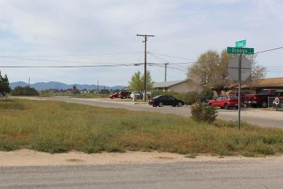 Hesperia CA Residential Lots & Land For Sale: $27,500
