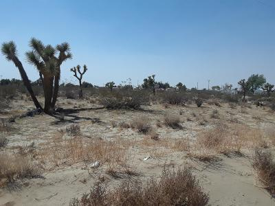 Phelan CA Residential Lots & Land For Sale: $25,000