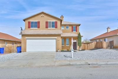 Victorville Single Family Home For Sale: 13669 Mesa View Drive