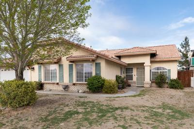 Victorville Single Family Home For Sale: 13259 Quiet Canyon Drive