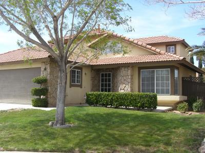 Victorville Single Family Home For Sale: 12632 Blazing Star Lane