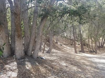 Wrightwood Residential Lots & Land For Sale: Desert View Lane