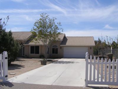 Hesperia Single Family Home For Sale: 14537 Orange Street