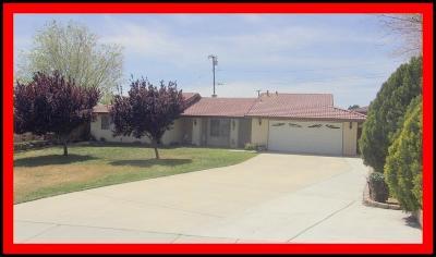 Victorville Single Family Home For Sale: 17021 Molino Drive
