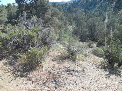 Pinon Hills Residential Lots & Land For Sale: Homeridge Dr Drive