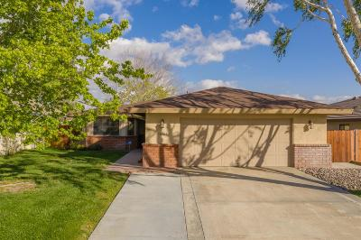 Victorville Single Family Home For Sale: 13065 Meteor Drive