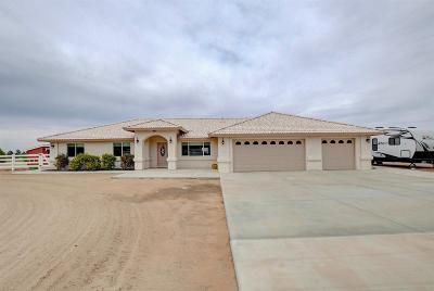 Apple Valley Single Family Home For Sale: 21818 Pacific Street