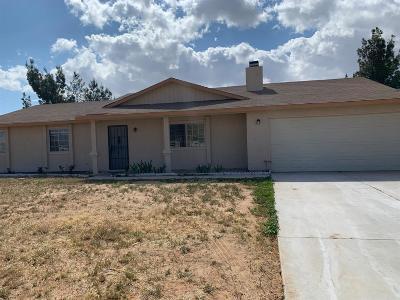 Apple Valley Single Family Home For Sale: 13338 Apple Blossom Lane