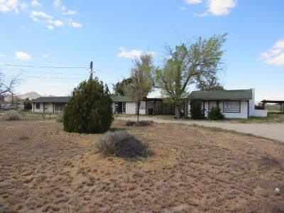 Apple Valley Single Family Home For Sale: 21750 Thunderbird Road