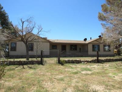 Victorville Single Family Home For Sale: 9925 7th Street