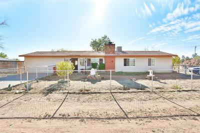 Apple Valley Single Family Home For Sale: 15420 Navajo Road