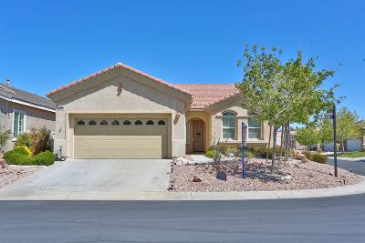 Apple Valley Single Family Home For Sale: 19562 Hanely Street