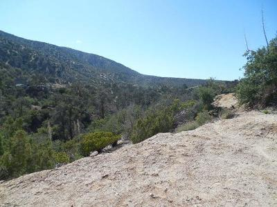 Pinon Hills CA Residential Lots & Land For Sale: $19,000