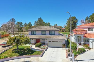 Victorville Single Family Home For Sale: 13824 Iron Rock Place