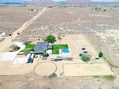 Apple Valley Single Family Home For Sale: 22352 South Road