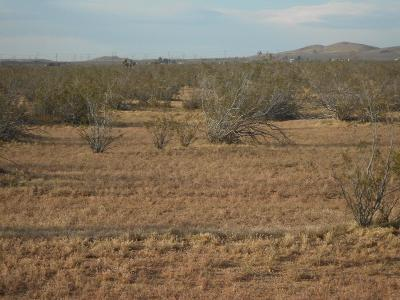 Apple Valley CA Residential Lots & Land For Sale: $97,016