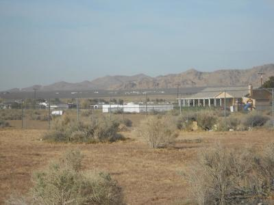 Apple Valley CA Residential Lots & Land For Sale: $52,502