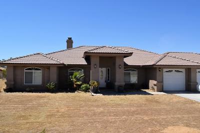 Apple Valley Single Family Home For Sale: 15350 Laguna Seca Drive