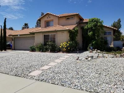 Victorville Single Family Home For Sale: 13436 Fox Point Road
