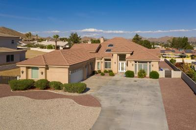 Apple Valley Single Family Home For Sale: 16233 Ridge View Drive