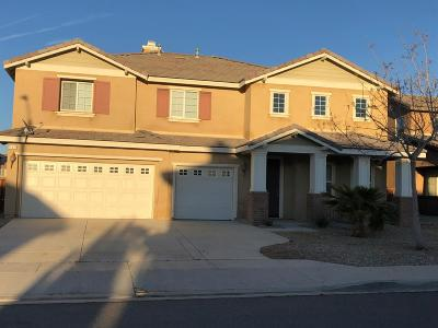 Victorville Single Family Home For Sale: 13817 Camino Lindo Street