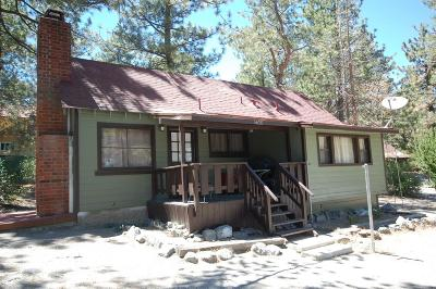 Wrightwood Single Family Home For Sale: 5620 Lone Pine Canyon Road