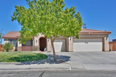 Hesperia Single Family Home For Sale: 6675 Banyan Avenue