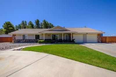 Apple Valley Single Family Home For Sale: 18523 Cocqui Road