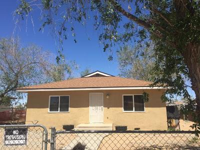 Adelanto Single Family Home For Sale: 12048 White Avenue