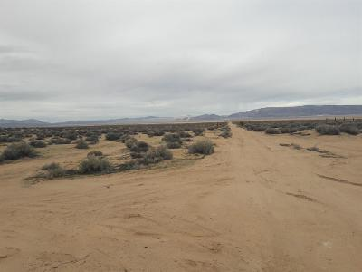 Barstow Residential Lots & Land For Sale: Lockhart Ranch Road
