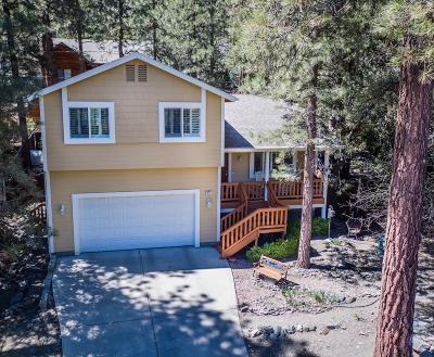 Wrightwood Single Family Home For Sale: 977 Pheasant Road