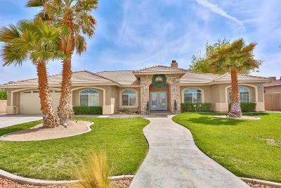 Victorville Single Family Home For Sale: 15873 Tokay Street
